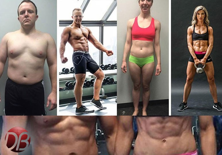 Dreambody Transformation
